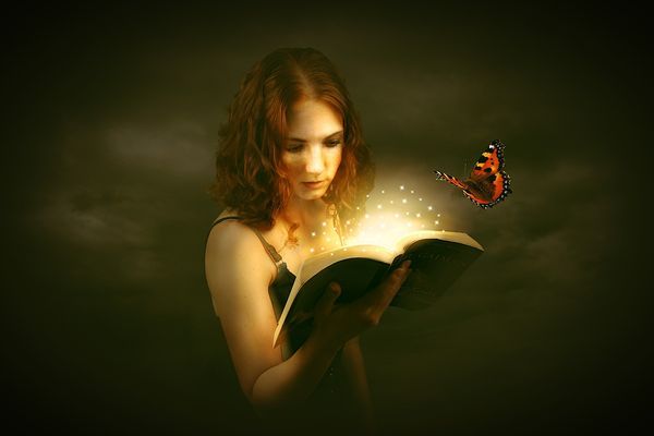 Леди с книгой