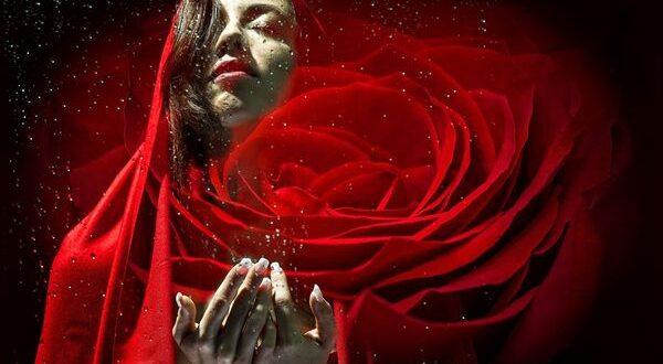 Леди и красная роза