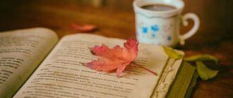 Книга и кленовый лист